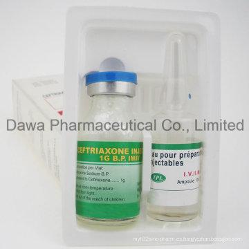 Inyección de antibiótico ceftriaxona sódica para infección bacteriana