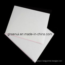 Laminating Pouch Film (PET HIGH SPEED FILM)