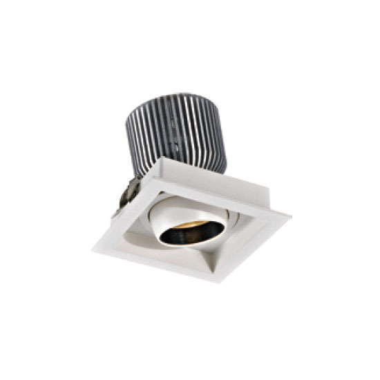 High Voltage 30W LED Downlight
