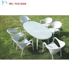 2016 Patio Furniture Outdoor Dining Table and Chair (1883-2)