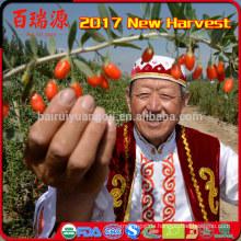 Goji-Beere Preis Bio-Lebensmittel niedrigen Preis getrocknete Früchte
