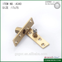 Hot sale brass &stainless steel pivot hinge for door