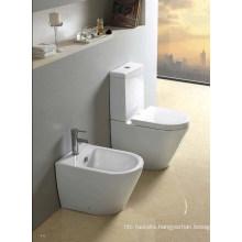 Deluxe Washdown Two- Piece Toilet (W1309)