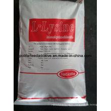 Lysine Amino Acids