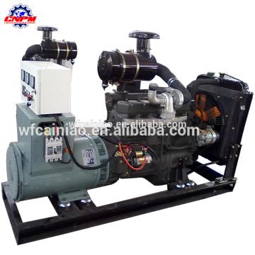 vente chaude ricardo r6105azld CE approuvé 100kw générateur électrique à vendre