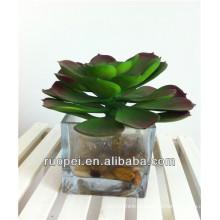 en gros plantes artificielles en pot succulentes
