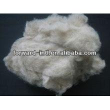 light grey/brown mongolian cashmere fiber