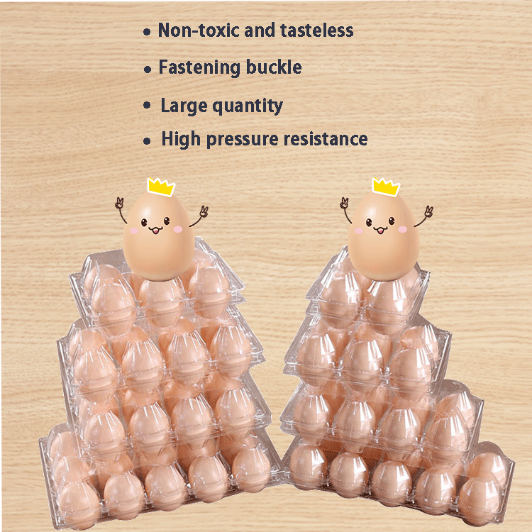 egg plastic tray