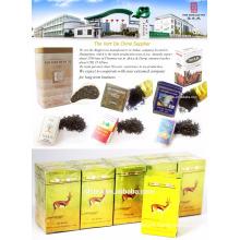 The vert de Chine, China green tea 41022AAAAA