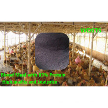 Blood Meal with High Protein for Animal Feed