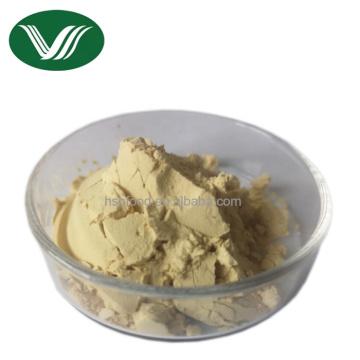 Natural 5% Gingerols Ginger Root Extract Powder