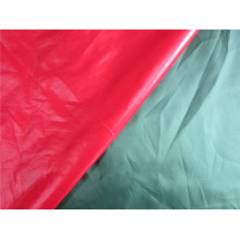 20d Nylon Taffeta Fabric for Down Coat (XSN005)