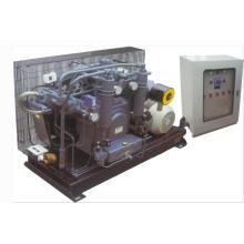 Compresseur à piston à haute pression alternatif de station hydroélectrique (K2-60WHS-1160H)