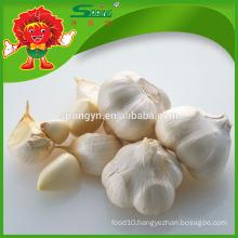 Chinese Fresh Normal Organic Pure White Garlic