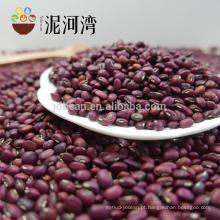 A mais alta qualidade 2012 nova safra bem escolhida feijão vermelho na venda quente