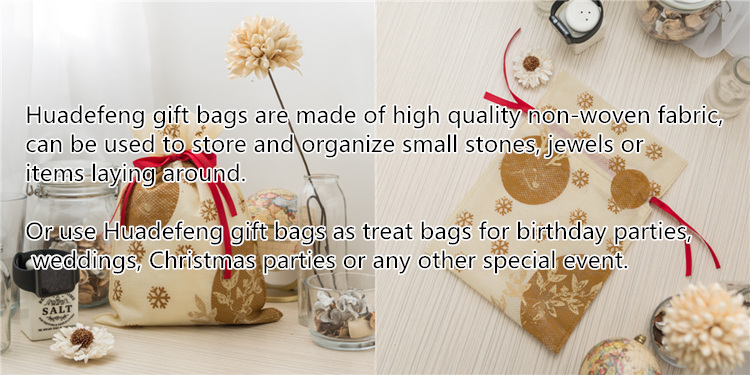 Nonwoven Gift Packing Bag