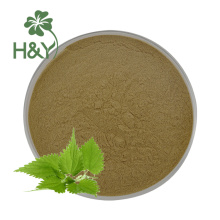 Factory price 100% natural nettle leaves extract salus