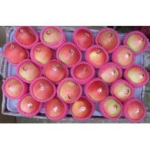 Süße Royal Gala Frische Apfel aus China