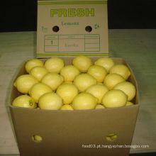 Qualidade exportada de limão fresco chinês /