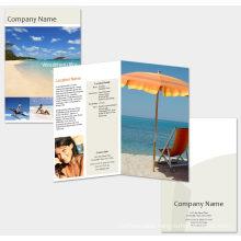 2016 Hottest Printing Brochure and Flyer, Leaflet, Booklet