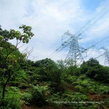 220 кВ одноцепная решетка железной силовой передачи башня
