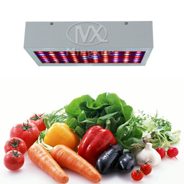 Profesional 300W LED Grow Light