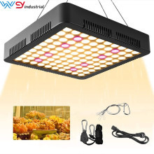 LED Grow Light 1000W Vollspektrum 3500K Sonnenartig