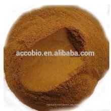 Mejor precio Extracto de hierbas de buena calidad Extracto de raíz de Goldthread chino Polvo 6% de berberina