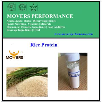 Grosses soldes! Protéine de riz à haute pureté