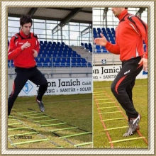 Escalera rápida del fútbol 2013 de Traning OEM (CL-AS-L01)