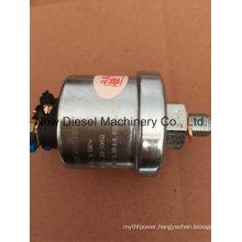 Weichai D226b-3D Oil Pressure Sensor