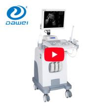 Aparelho DW370 para o exame ultra-sônico do paciente ginecologia