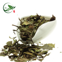Organic Best White Tea Brands White Tea