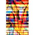 Bright Color Printed Fabric for Swimwear Fabric (ASQ077)