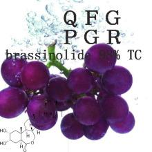 Hormona vegetal CAS 72962-43-7 Brassinolide 98% Tc