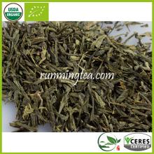 Sencha orgánico con vapor de té verde