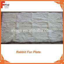 Placa de piel de conejo blanco de grado europeo
