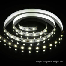 Constant Current 5050 LED Strip LED Light