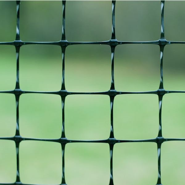 Stretched Plastic Fence
