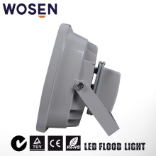 50W Garden Use LED Floodlight with Meanwell Driver