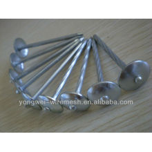 YW--umbrella roofing nails with twist shank