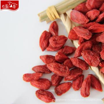 2017 новый сушеные свежие фрукты ягоды годжи