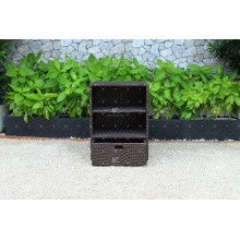 RACA-002 Best selling New Poly Rattan All weather resistance Bathroom, Kitchen Cabinet
