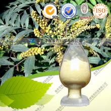 Extrait de fil d'or chinois 100% naturel de haute qualité - Berbérine