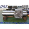 Forging Shaft, Forging Axis, F304