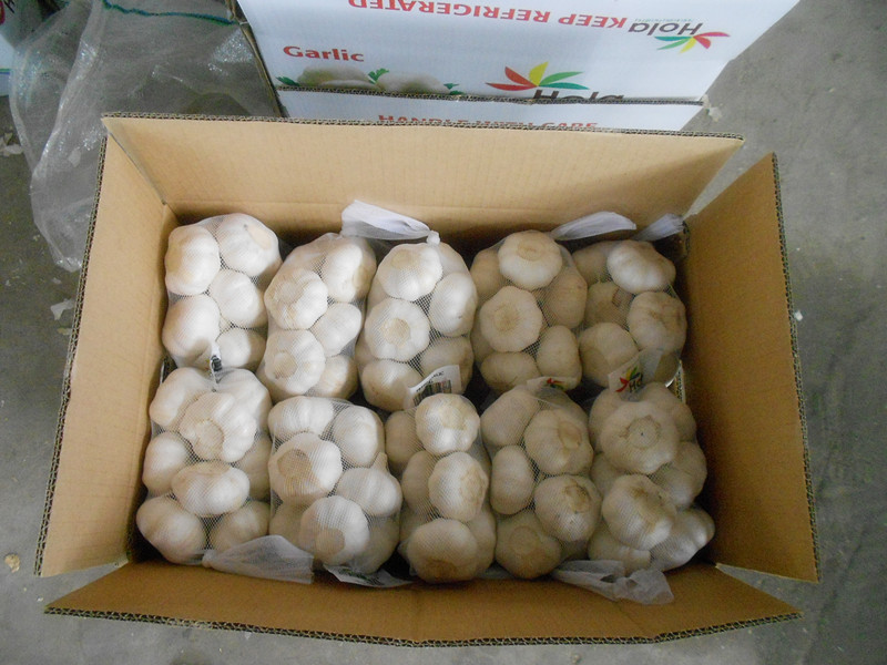 500g mesh bag pure white garlic