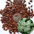 White popinac seed for sale