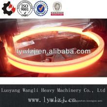 Anillo de forja de alta calidad del OEM hecho en China