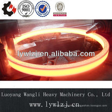 OEM High Quality Forging Ring Made In China