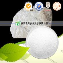 Natural Herbal Raw Material Talcum